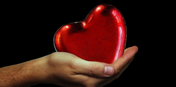Preserving Your Heart – How Healthy Aging Affects YourTicker