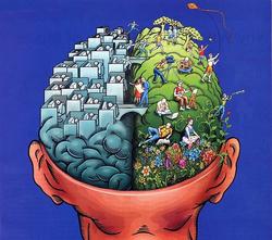 Lutein and Zeaxanthin Boost BrainPower